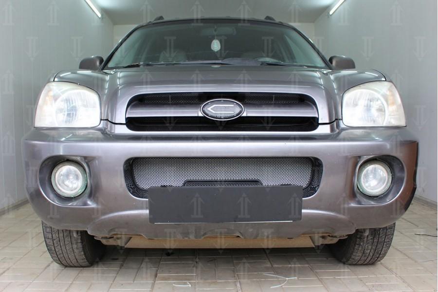 Защита радиатора Hyundai Santa Fe 2000-2012 chrome низ